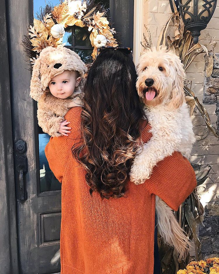 cute baby halloween costumes, cute dog baby photos halloween, goldendoodle costume,