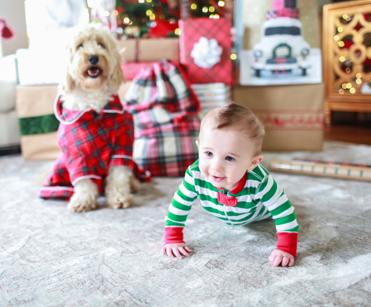 Family Christmas Pajamas Including Dog.Holiday Pajamas For The Whole Family The Sweetest Thing