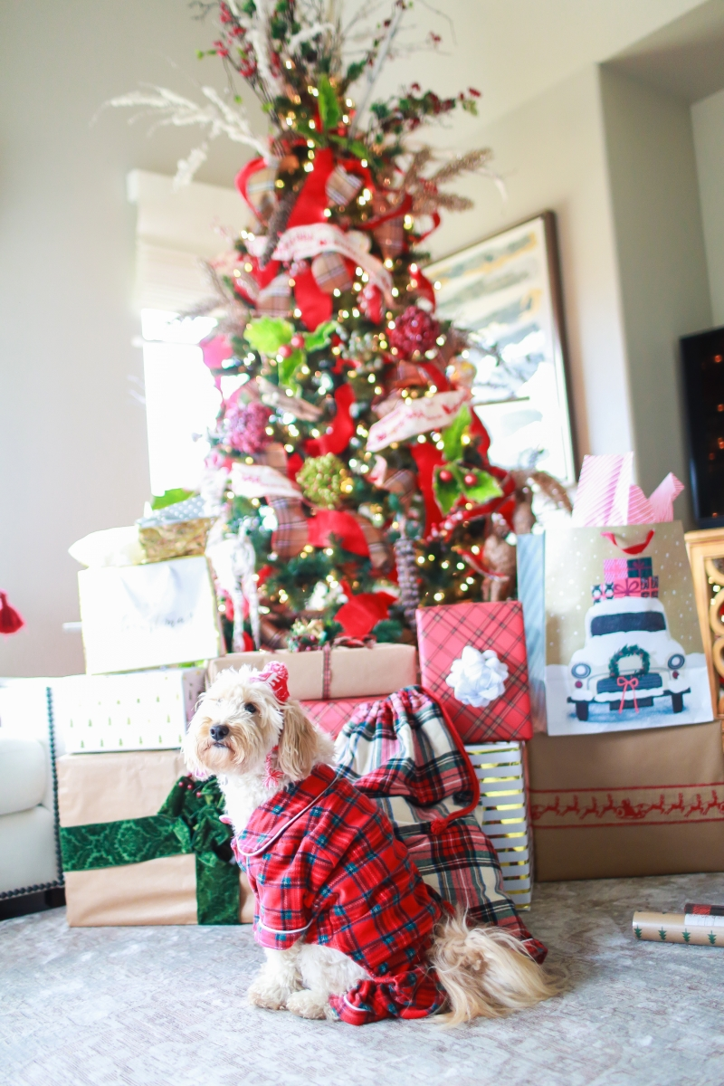 Holiday Pajamas For The Whole Family The Sweetest Thing