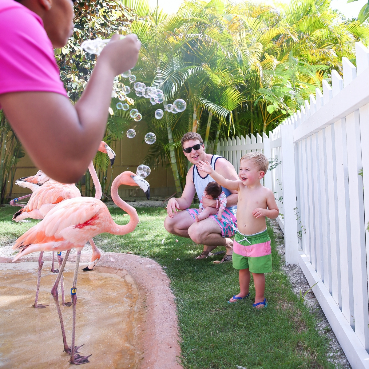 Bahamar review, emily ann gemma, the sweetest thing blog, bahamas travel blogger