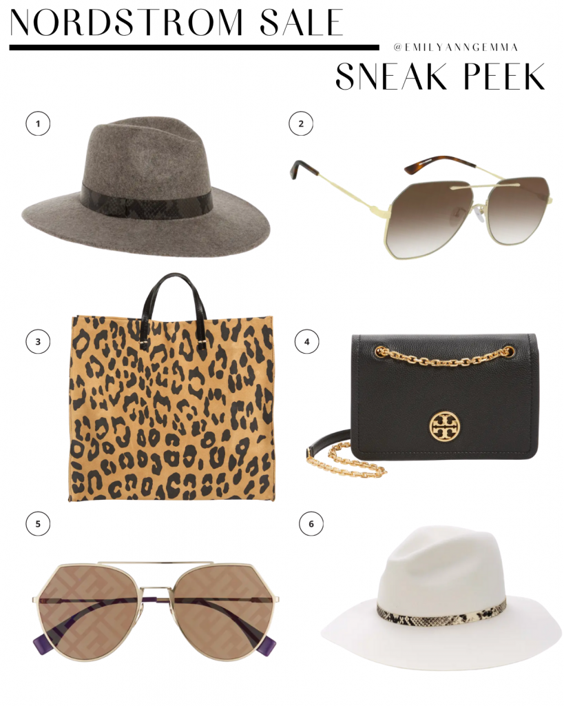 nsale 2020, nordstrom anniversary sale 2020, nSALE hats sunglasses and bags, must have blog posts nordstrom sale 2020, Emily Ann Gemma, the sweetest thing blog | Nordstrom Anniversary Sale by popular US fashion blog, The Sweetest Thing: image of Nordstrom TREASURE & BOND Snakeskin Print Trim Wide Brim Wool Panama Hat, MCQ ALEXANDER MCQUEEN 62mm Oversize Aviator Sunglasses, CLARE V. Simple Leopard Print Suede Tote, TORY BURCH Carson Convertible Leather Crossbody Bag, FENDI Eyeline 55mm Sunglasses, RAG & BONE Wide Brim Fedora.