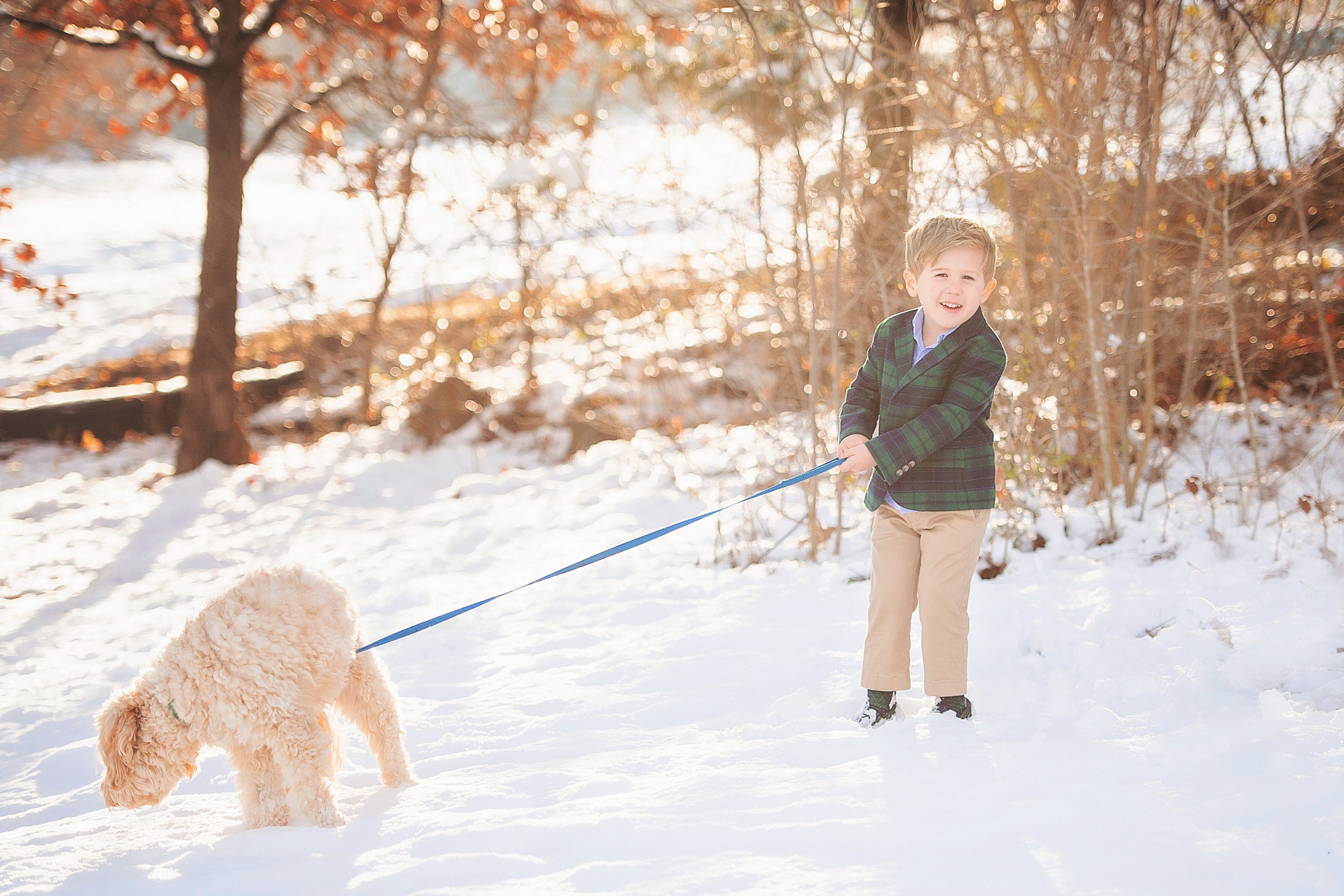 Family Christmas Card by popular US lifestyle blog, The Sweetest Thing: image of a young boy wearing a blue and green plaid blazer and tan pants while standing in the snow snow and holding his dog's leash.